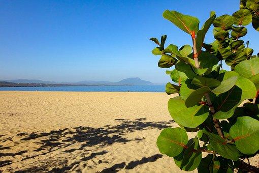 Beach, Sea, By The Sea, Beach Sea, Holiday, Summer