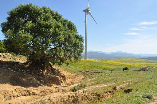 Landscape, Windmill, Sky, Ecological, Renewable Energy