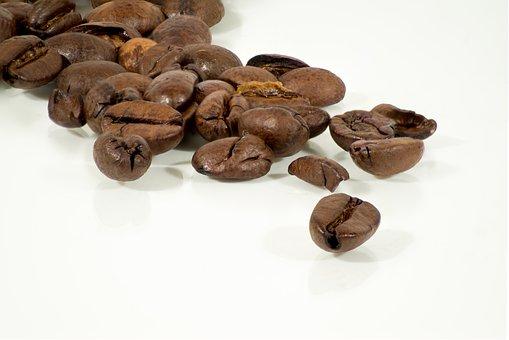Coffee, Arabica Beans, Beans, Caffeine, Fresh, Bridge