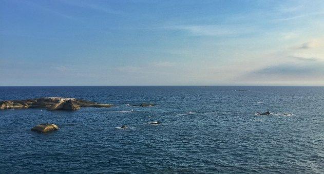 South China Sea, Stone Park, Blue