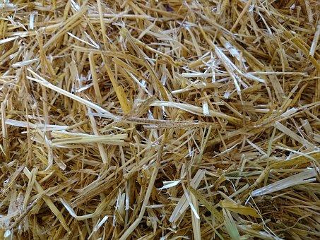 Straw, Hay, Haystack