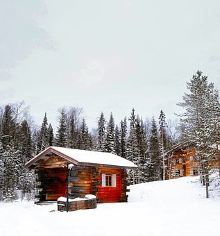 Winter, Snow, Forest, Trees, Woods, Cloudy, Log Cabin
