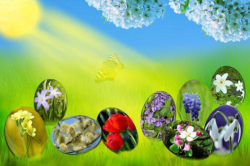 Easter, Eggs, Spring, Sun, Grass, Green, Sky, Blue