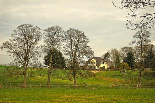 Landscape, Idyll, Rest, Meadow, Seefeld, Outlook