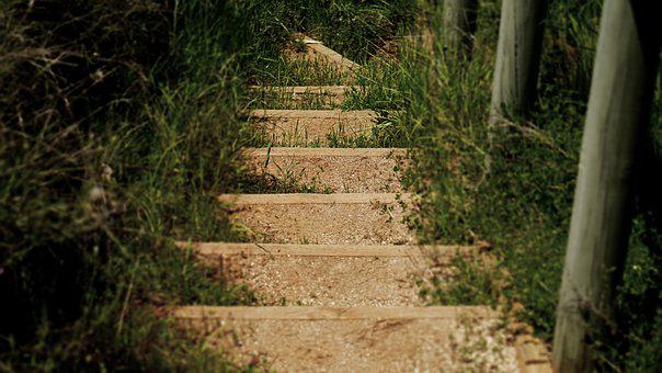 Steps, Stairs, Grass, Walkway, Nature, Walk, Person