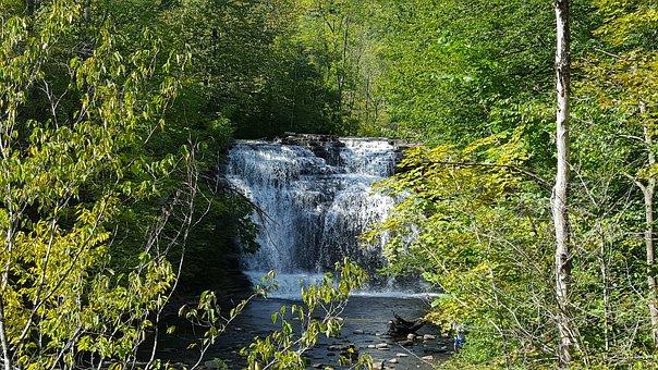 Pixley Falls, Waterfall, Creek, Woods