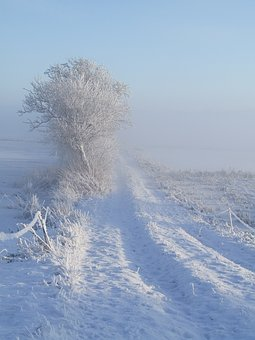 Winter, White, Snow, Away, Cold, Wintry, Mood, Nature