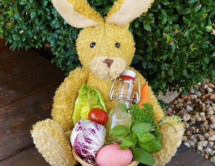 Easter Bunny, Easter Nest, Garden, Out, Easter Egg, Bio