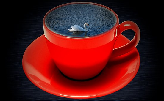 Coffee Cup, Red, Swan, Water, Wave, Swim, Drink