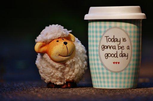 Sheep, Beautiful Day, To Go, Joy, Coffee, Cup, Happy