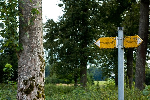 Trail, Directory, Shield, Signposts, Direction, Nature