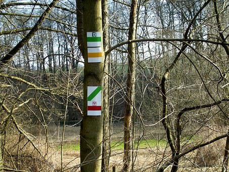 Trail Signs, Directory, Mark, Migratory Character