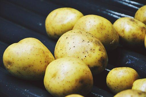 Potatoes, Washing, Tubers, A Vegetable