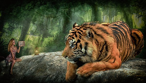Tiger, Woman, Forest, Fairytale, Mood, Girl, Fantasy