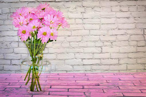 Spring, Flowers, Daisies, Pink, Floral, Bouquet, Nature