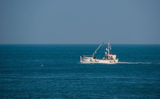 Fishing Vessel, Fischer, North Sea, Cutter, Ship