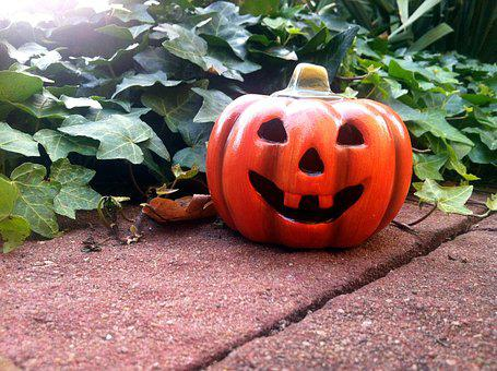 Halloween, Pumpkin, Ivy, Garden, Hollow Out, Orange