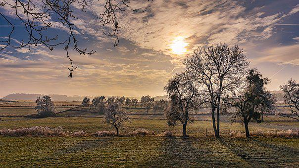Wintry, Winter, Cold, Sunrise, Tree, Landscape