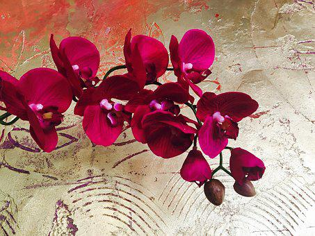 Orchid, Flower, Gold Wall, Plant, Artificial