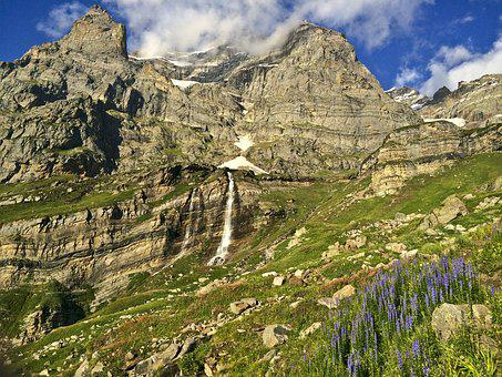 Mountains, Hills, Grass, Flowers, Flora, Wildflowers