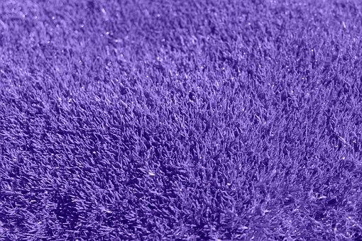 Background, Purple, Grass, Lilac, Carpet, Fabric