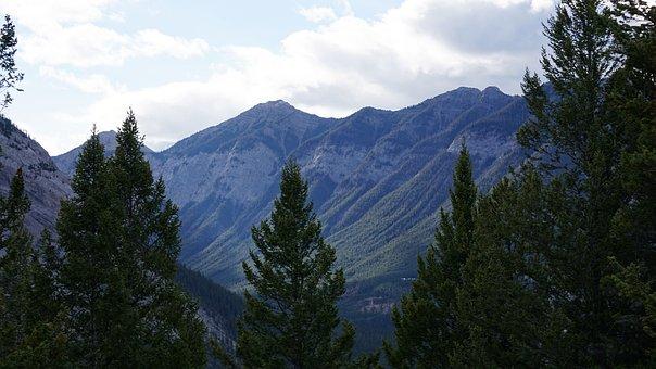Wood, Mountain, Canada, Banff, Rockies