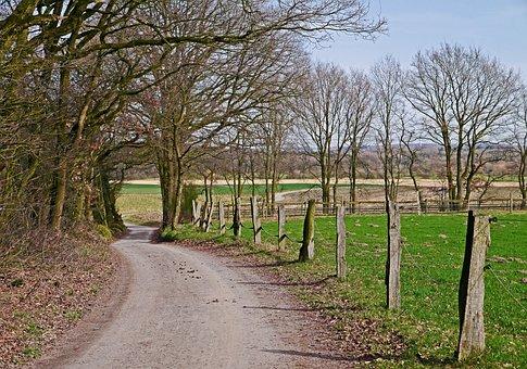 Münsterland, Agriculture, Dirt Track, Trail, Hill Land
