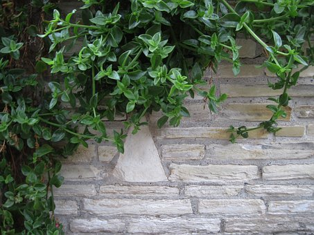 Brick, Wall, Brick Wall Background, Brick Wall, Aged