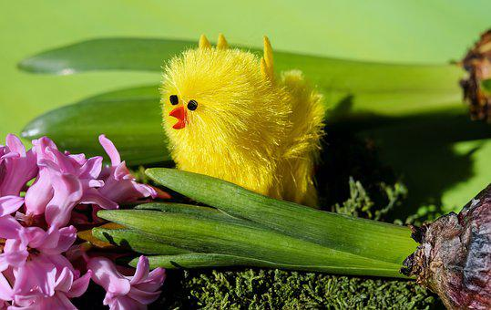 Easter Theme, Easter, Figure, Chicken, Yellow, Cute