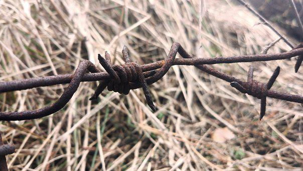 Barbed Wire, Macro, Wire, Fencing, Rust, Corrosion