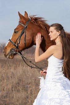 Horse, Wedding Dress, Field, Wedding, Girl