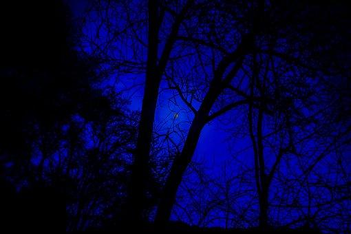 Night Photograph, Full Moon, Night Sky, Moon, Night