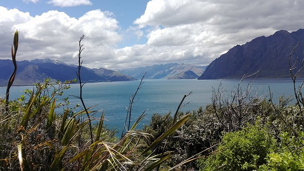 New Zealand, South Island, Nature, Ocean, Landscapes