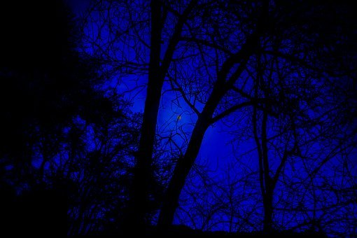 Night Photograph, Full Moon, Night Sky, Moon, Night