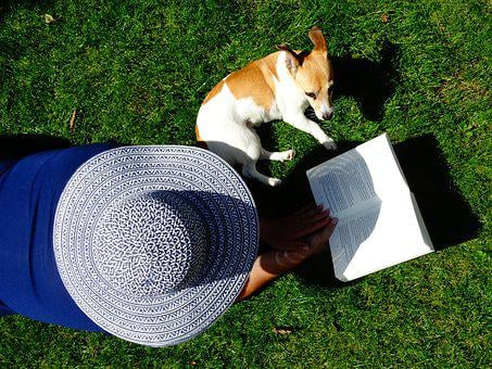 Hat, Book, Read, Pet, Relax, Grass, Books, Garden, Are