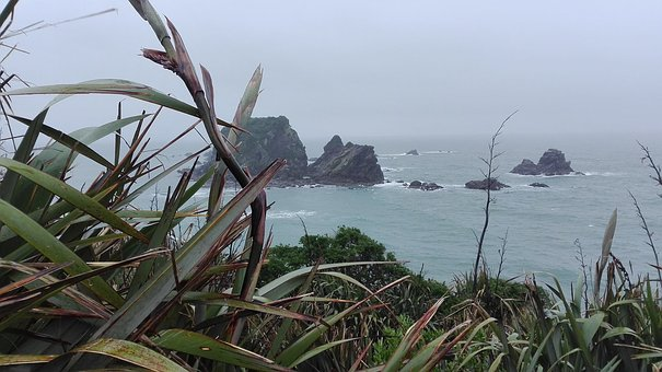 New Zealand, Cloudy, South Island, Nature, Ocean