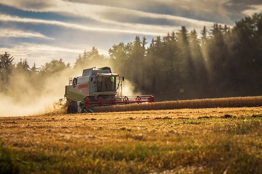 Claas, Lexion, Combine Harvester, Harvest, Agriculture