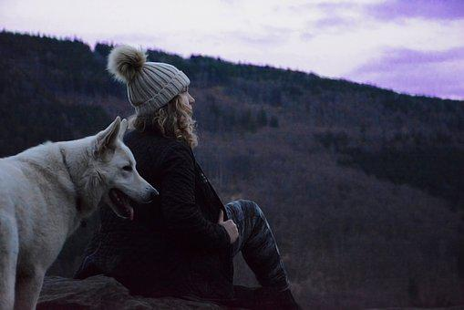 View, Lookout, Landscape, White Dog, One, Mountains