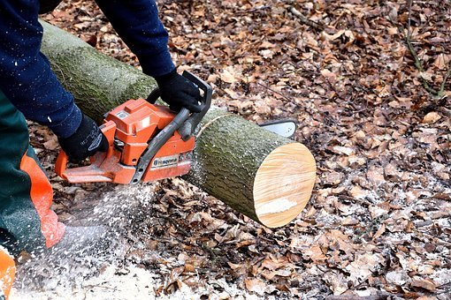 Lumberjack, Chainsaw, Woodworks, Tree Trunks, Lumber