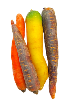 Carrots, Rainbow, Food, Vegetable, Colorful, Png