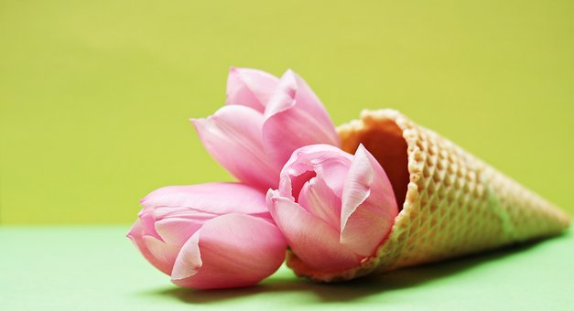 Tulips, Tulip Flower, Flowers, Ice Cream Cone, Waffle