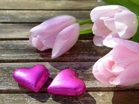 Heart, Pink, Chocolate, Tulips, Sunlight, Sun, Out