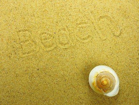 Sand, Beach, Shell, Nature, Summer, Background, Map