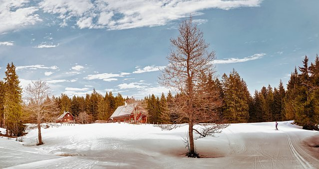 Austria, Landscape, Scenic, Winter, Snow, Ski, Forest