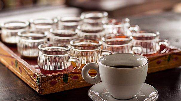 Luwak, Coffee, Cat Coffee, Coffee Sample, Bali