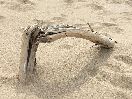 Beach, Wood, Texture, Coast, Island, Sand, White