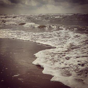 Sea, Beach, Kijkduin, Coast, Foam