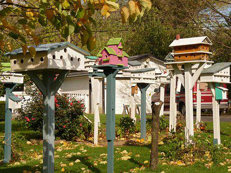 Birdhouse, Collection, Bird, House, Yard, Garden