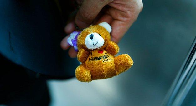 Bear, Doll, Teddy Bear, Winnie, Yearning, Memory
