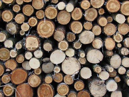 Wood, Annual Rings, Pile Of Wood, Tree Trunks
